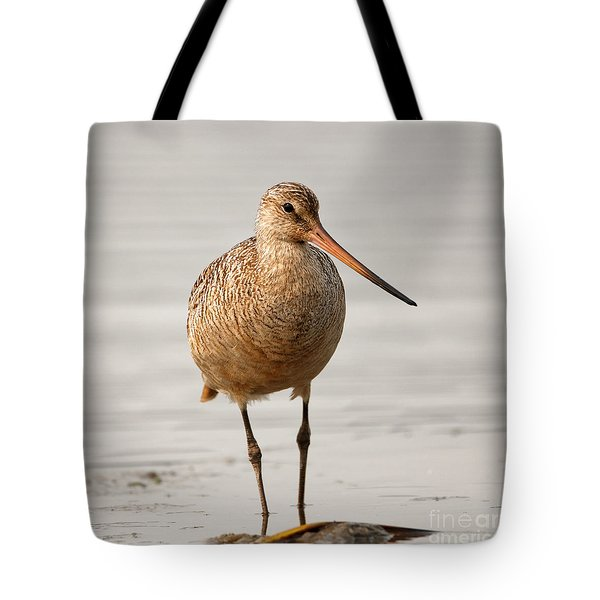 Marbled Godwit - Beauty Tote Bag