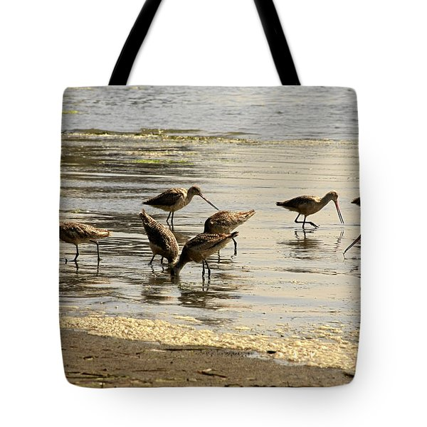 Marbled Godwit Birds At Sunset Tote Bag by Christine Till