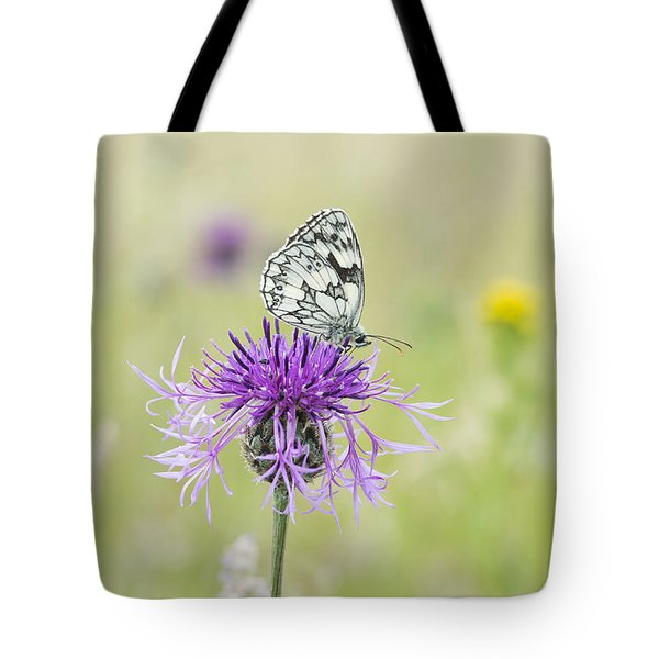 Marbled White Butterfly Tote Bag