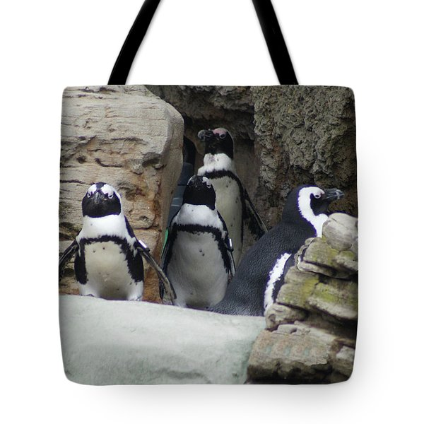 Tote Bag featuring the photograph March Of The Penguins by B Wayne Mullins