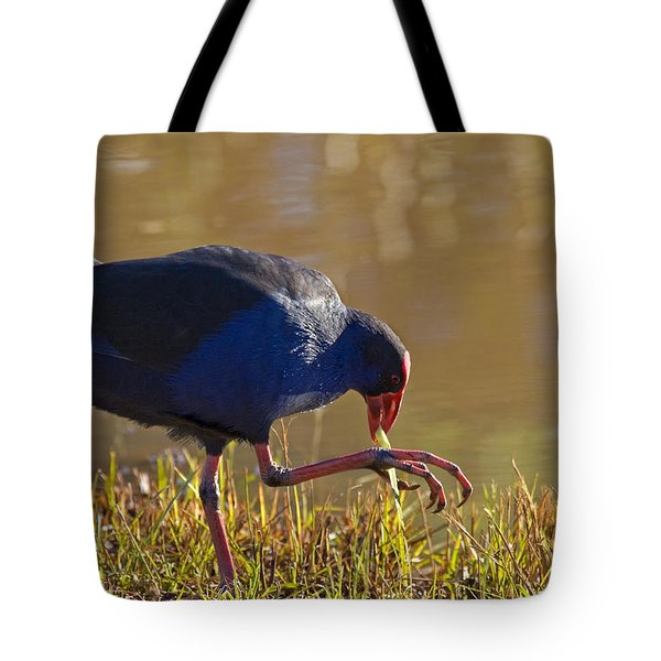 March Of The Swamphen Tote Bag by Mike  Dawson