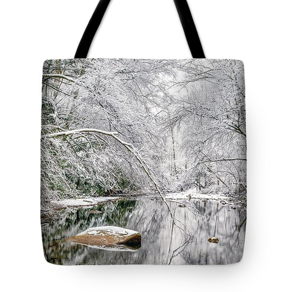 Tote Bag featuring the photograph March Snow Along Cranberry River by Thomas R Fletcher
