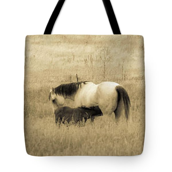 Tote Bag featuring the photograph Mare And Foal  by Dawn Romine