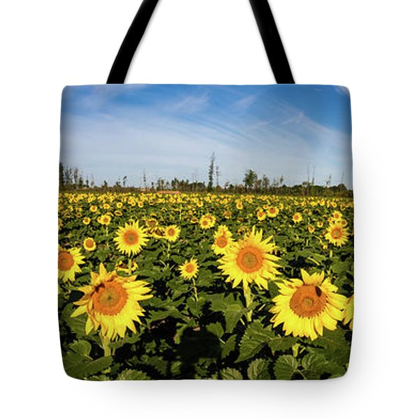 Tote Bag featuring the photograph Maria's Sunflower Field Pano by Lon Dittrick