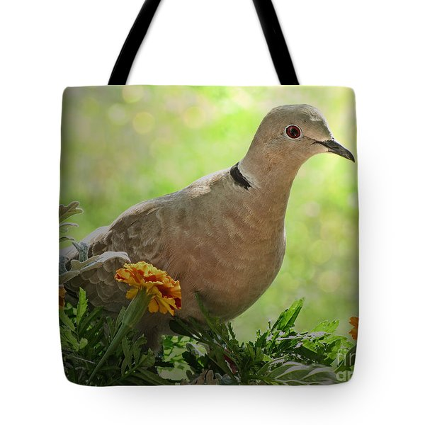 Tote Bag featuring the photograph Marigold Dove by Debbie Portwood