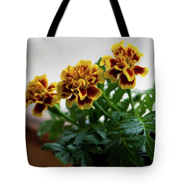 Marigold In Winter Tote Bag by Jeff Severson
