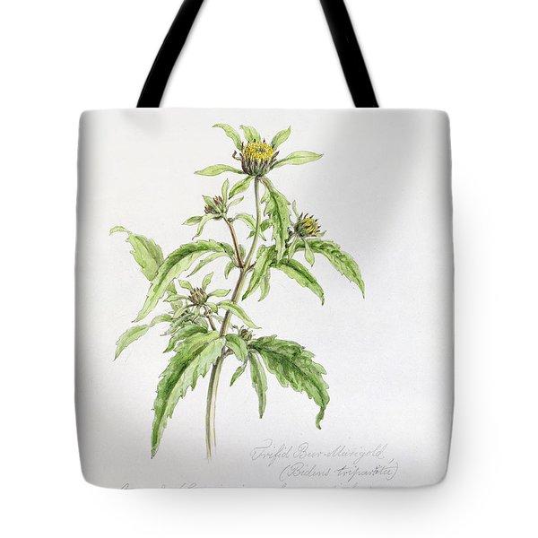 Marigold Tote Bag by WJ Linton
