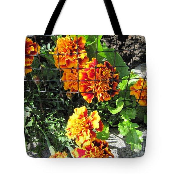 Marigolds In Prison Tote Bag