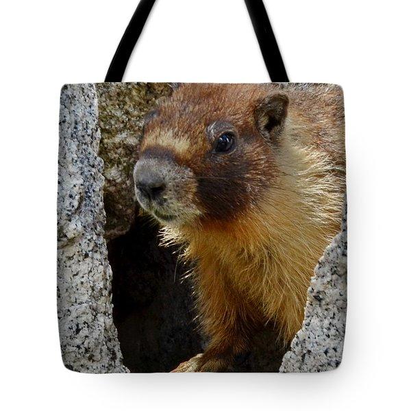 Tote Bag featuring the digital art Marmot 4 by Visual Artist Frank Bonilla