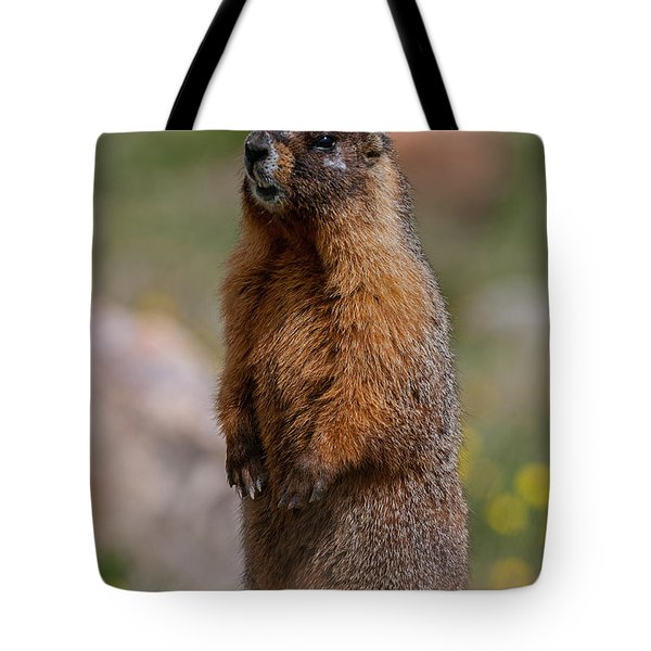 Tote Bag featuring the photograph Marmot by Gary Lengyel