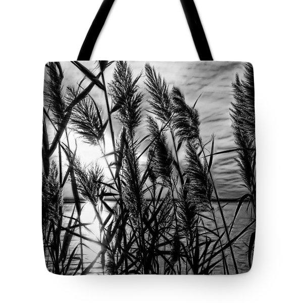 Marsh Grass Bw Tote Bag by John Loreaux
