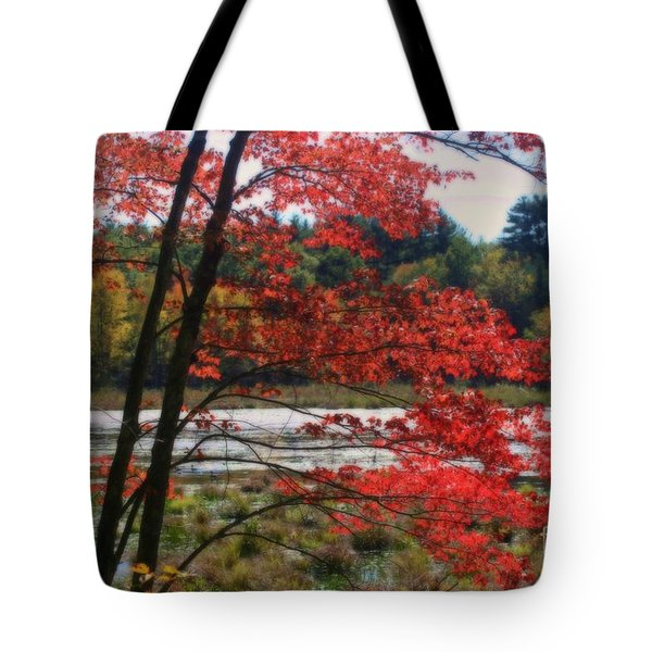 Tote Bag featuring the photograph Marsh In Autumn by Smilin Eyes  Treasures