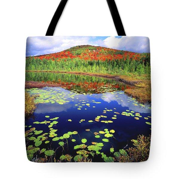 Marsh Pond Tote Bag