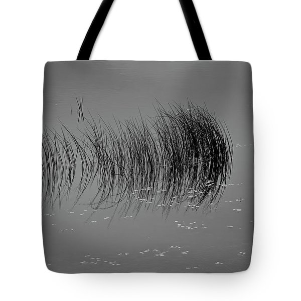 Tote Bag featuring the photograph Marsh Reflection by Albert Seger