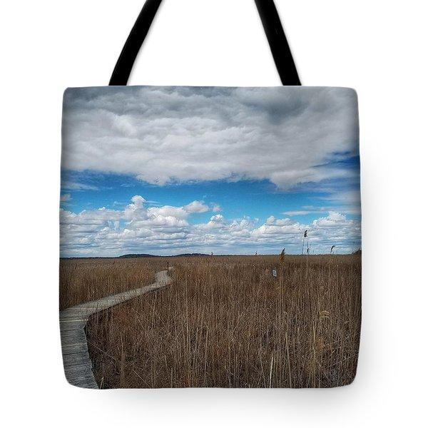 Marsh Walk 3 Tote Bag