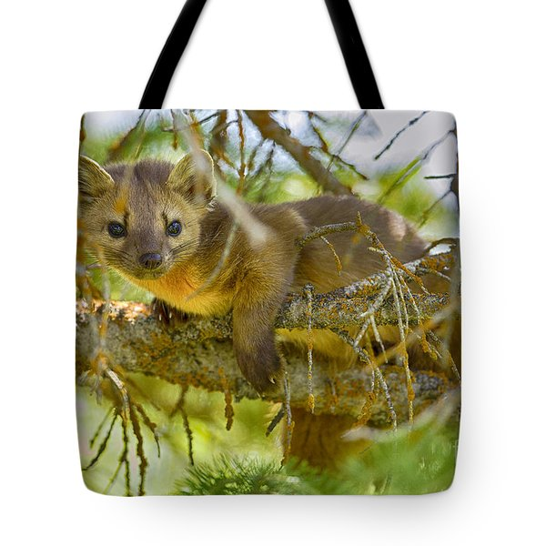 Tote Bag featuring the photograph Marten by Aaron Whittemore