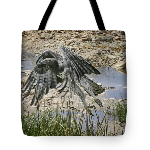 Martial Eagle Tote Bag by Gary Hall