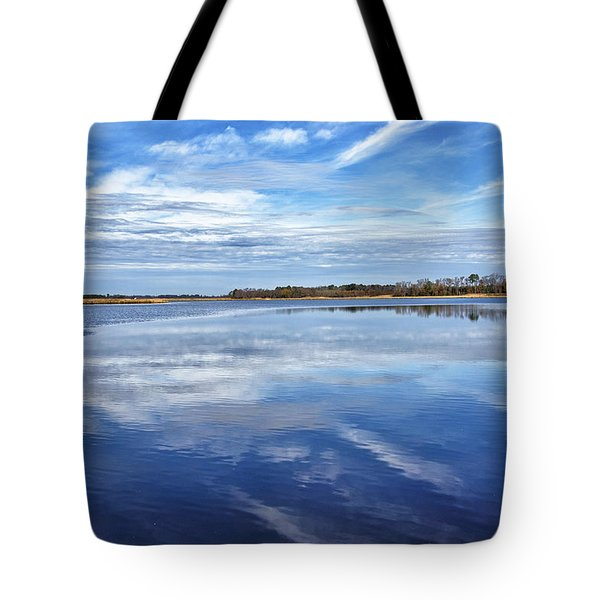 Tote Bag featuring the photograph Maryland - Blackwater National Wildlife Refuge by Brendan Reals
