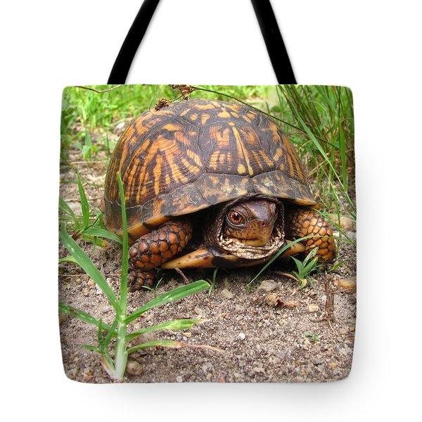 Maryland Box Turtle Tote Bag