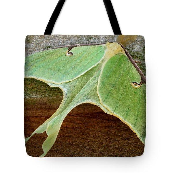 Maryland Luna Moth Tote Bag