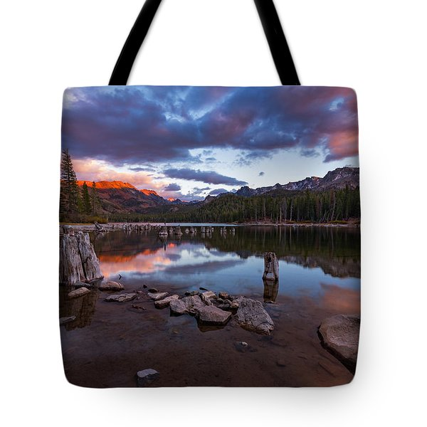 Mary's Reflection Tote Bag