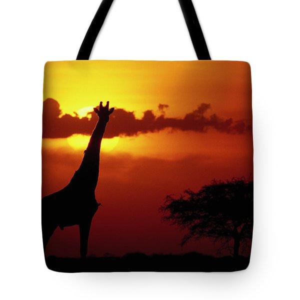 Masai Giraffe Giraffa Camelopardalis Tote Bag by Gerry Ellis