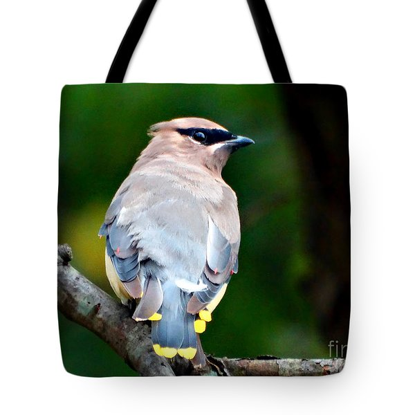 Mask And Feathers Tote Bag