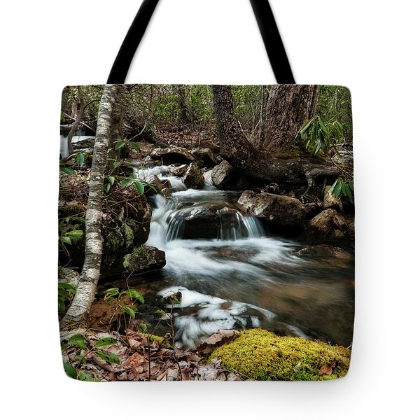 Tote Bag featuring the photograph Massanutten Spring 2 by Lara Ellis