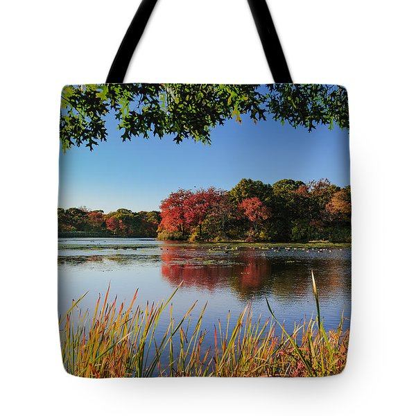 Tote Bag featuring the photograph Massapequa Nature Preserve by Jose Oquendo