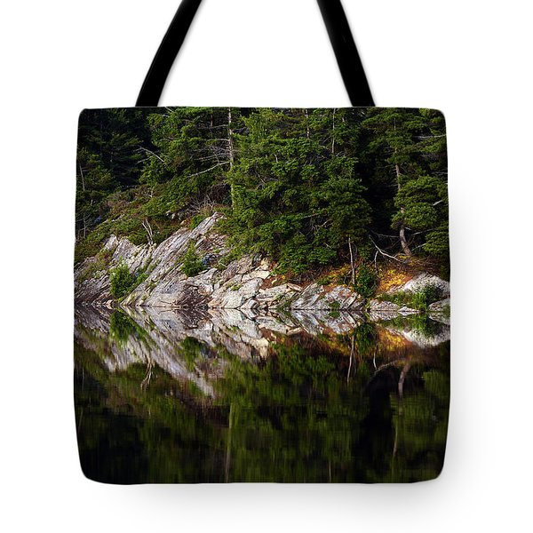 Massasauga Park Reflection Tote Bag