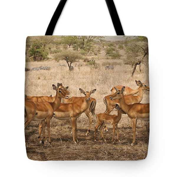 Master Of His Domain Tote Bag by Gary Hall