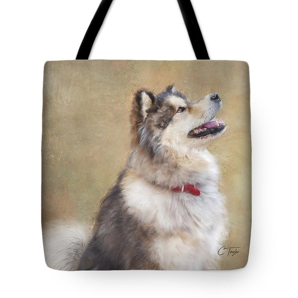 Tote Bag featuring the painting Master Of The Domain II by Colleen Taylor
