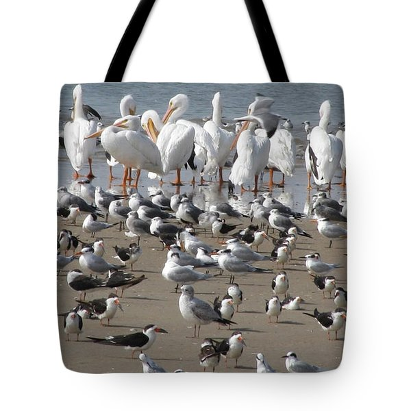 Matagorda Beach Sea Birds Tote Bag by Jimmie Bartlett