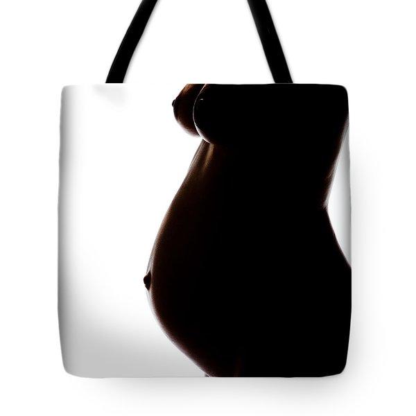 Maternity 259 Tote Bag