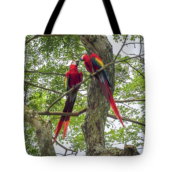Tote Bag featuring the photograph Mates For Life by David Morefield