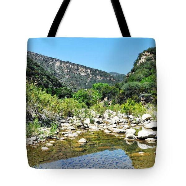 Tote Bag featuring the photograph Matilija Hot Springs by Kyle Hanson