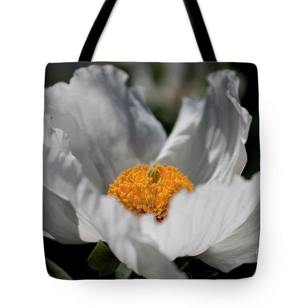 Matilija Poppy Tote Bag
