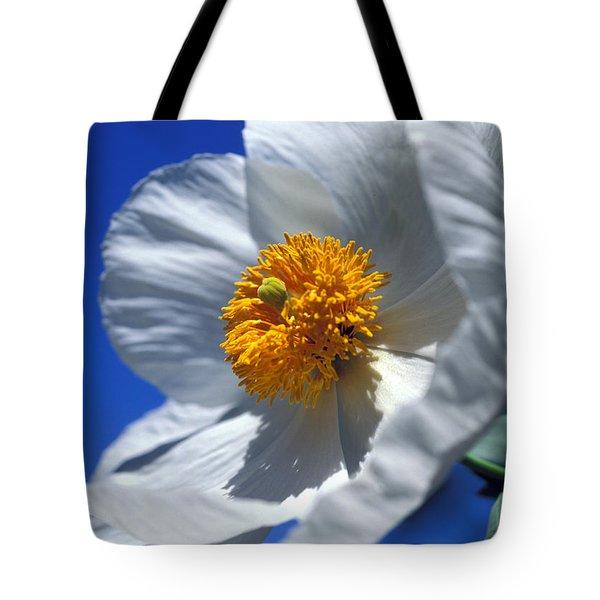 Matilija Poppy Tote Bag by Kathy Yates