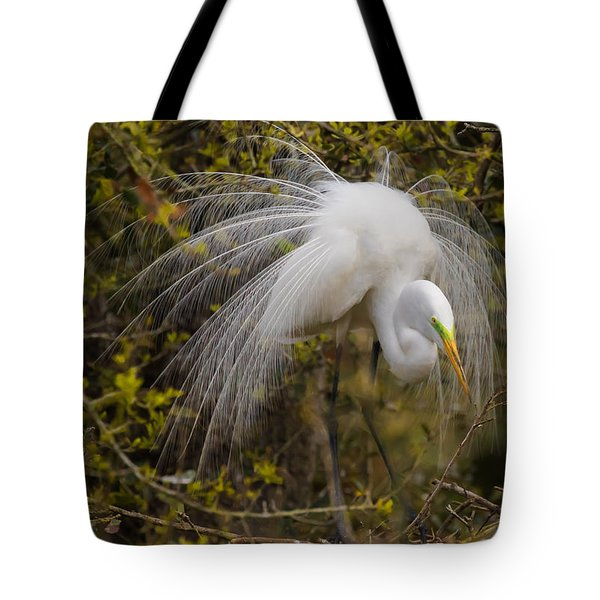 Mating Egret Tote Bag by Kelly Marquardt