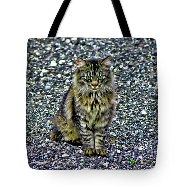 Mattie The Main Coon Cat Tote Bag