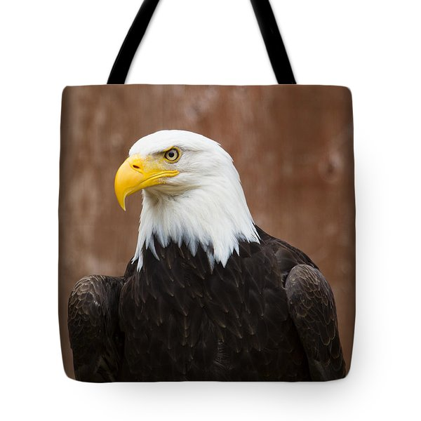 Mature Adult Bald Eagle Tote Bag