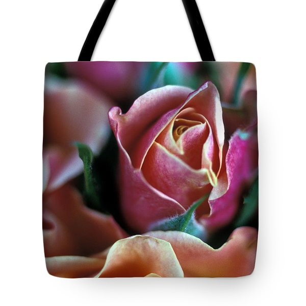 Mauve And Peach Roses Tote Bag by Kathy Yates