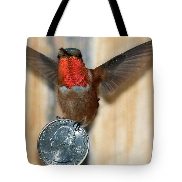Max And His Quarter II Tote Bag