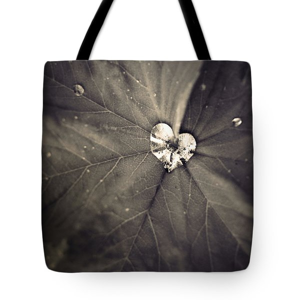 May 11 2010 Tote Bag