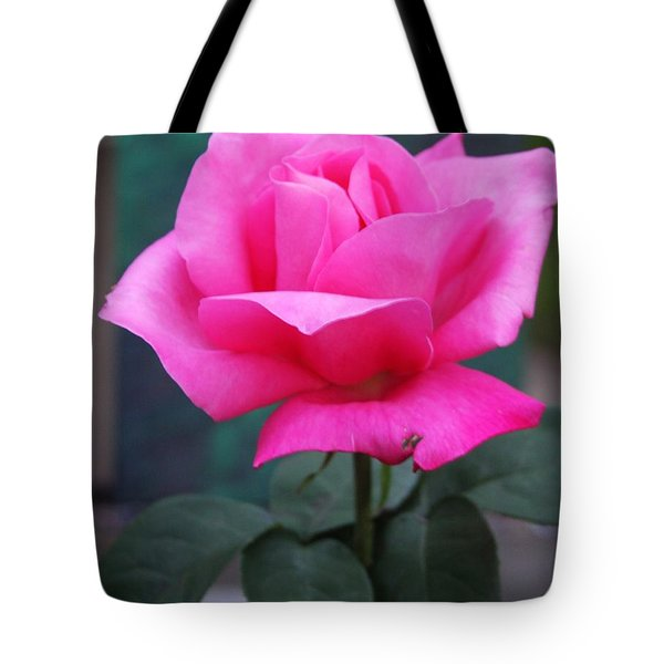 Tote Bag featuring the photograph May Beauty by Vadim Levin