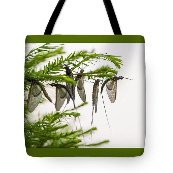 Mayfly Slumbers Tote Bag