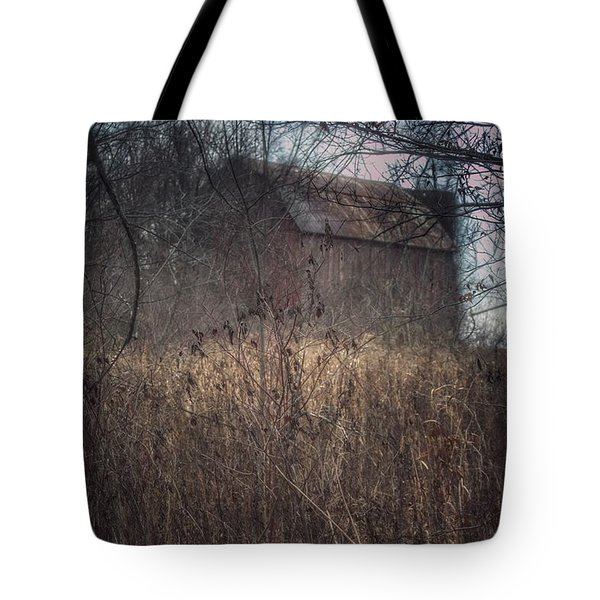 0025 - Mayville's Hidden Barn I Tote Bag