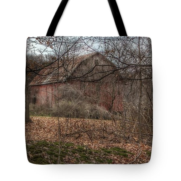 0026 - Mayville's Hidden Barn II Tote Bag