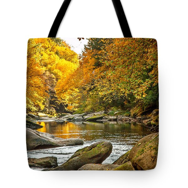 Mcconnell's Mill State Park Tote Bag by Skip Tribby