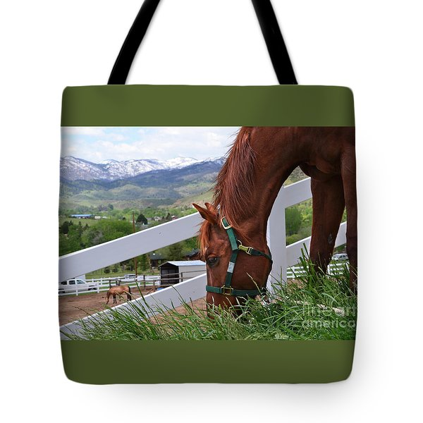 Mccool Grazing Tote Bag